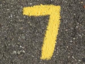 Tara's number 7 from Pixabay