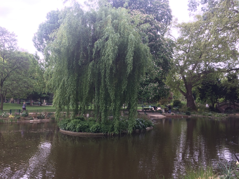 Weeping Willow Parc Monceau